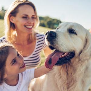 Client testimonials - family