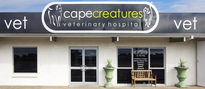 Entrance - Cape Creatures Vet